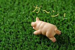 高知競馬の「下村瑠衣」が職場結婚で引退!お相手は超ガンプラオタクの…!?