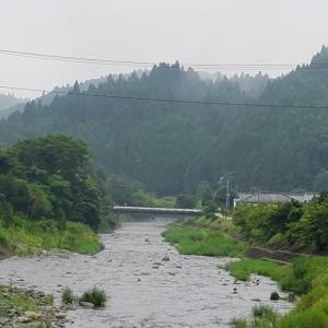 今日の入遠野川