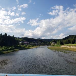 今日の鮫川