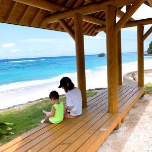 夏休みは奄美大島へ。
