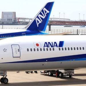 【絶望】ANA、ガチのマジで終了!大赤字によって飛行機も手放す模様