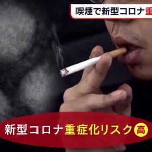 【悲報】JT逝く!国内喫煙率が過去最低の16.7%となり記録を更新