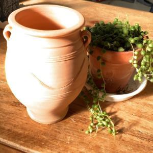 クレタ島の鉢