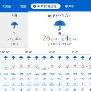 雨なんだって〜 (´・ω・`)