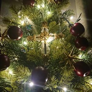 一年中クリスマスツリーでお祝いを☆
