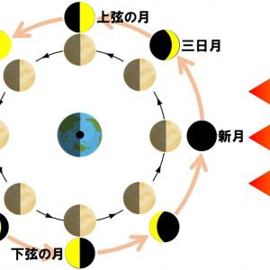 【中学3年理科】月の見え方のポイント・問題演習