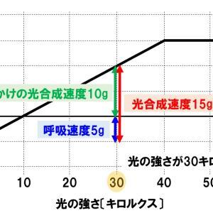 【中学理科・発展】光合成速度の計算・グラフ