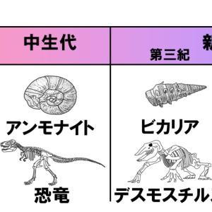 【中学1年理科】示相化石と示準化石
