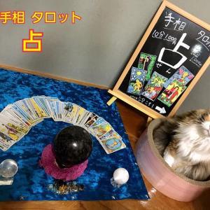 11月の『み』イベント出展者情報〜NO.30