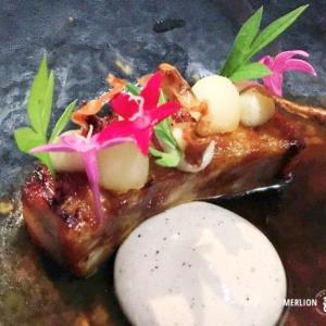 ミシュラン1つ星レストラン「アルマ 」創作系キュイジーヌのディナー