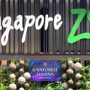 「シンガポール動物園」でするべき5つのコト!半日満喫モデルプラン