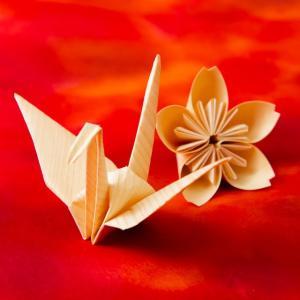 厚さ0.15mm 木なのに折り曲げられる 極薄天然木の紙 森の紙
