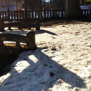 今日は雪の特異日
