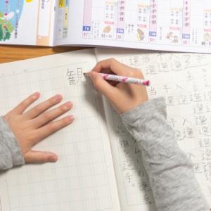 【小2】夏休み前の懇談会!宿題チェックのポイント3点-国語と音読-