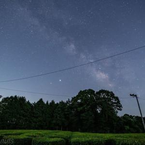 神野山の茶畑と星空