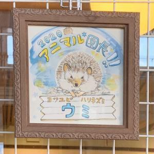 京都市動物園の春②ミライハウスさんでの展示販売
