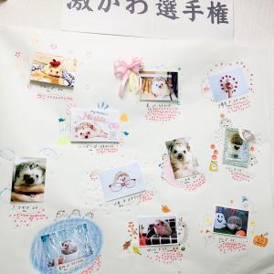 ハリコレ2020『激かわ選手権』結果発表!!