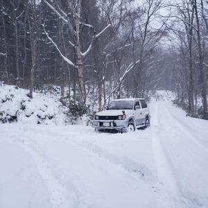 吹雪の中で・・・。