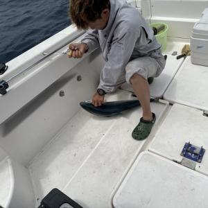 昨日も行った魚釣り!