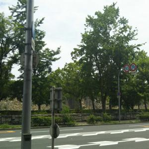大阪城の外周も寂しい