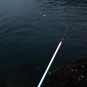 夏魚を求めて旅1