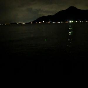沼津で陸っぱり太刀魚狙い