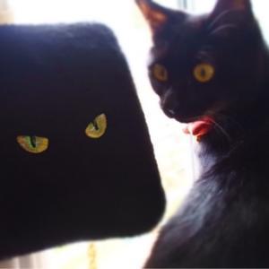 黒猫ショルダーバッグ★うれしいオーダー