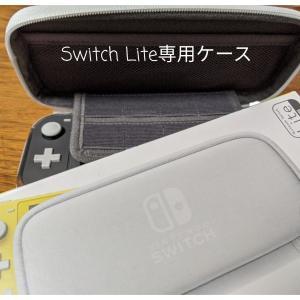 59%off♪送料無料880円のLite専用ケース