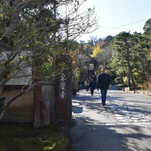 もみじ狩り 神奈川県鎌倉市(4)北鎌倉・東慶寺のもみじ
