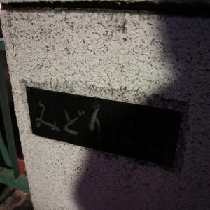 ソメイヨシノ 東京都目黒区目黒川沿いライトアップ(7)緑橋