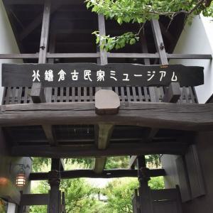 あじさい狩り 神奈川県鎌倉市 北鎌倉古民家ミュージアム(1)小さいあじさいだらけ
