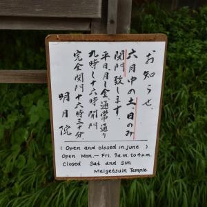あじさい狩り 神奈川県鎌倉市 明月院:あじさい寺(1)今年も6月中の土、日のみ閉門です