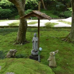 あじさい狩り 神奈川県鎌倉市 明月院:あじさい寺(6)お地蔵さんとうさぎとカメ