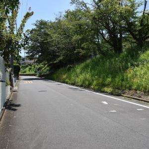 ヤマユリ狩り 神奈川県湘南二宮町 一色小学校・友情の山(1)東門からスタート