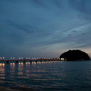 夕闇迫る頃竹島に集う