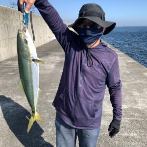 今週の釣果