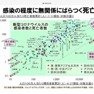 日本の死者はなぜ少ない (その2)  ( この新説、そうなんだろうか?)