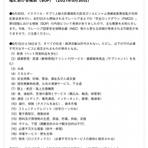 フルロックダウン中の許可業種/活動 (エッセンシャルサービス)