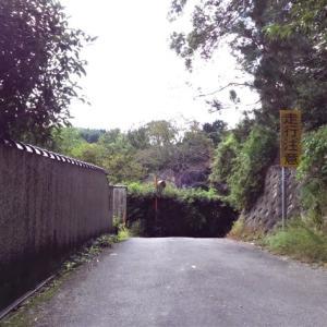 榁木峠(むろのきとうげ):国道(酷道)308号線にある奈良県の峠