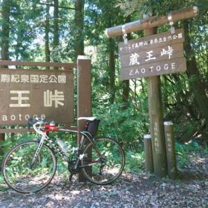 蔵王峠(ざおうとうげ):大阪府道・和歌山県道61号堺かつらぎ線