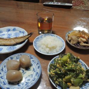 夕食&晩酌