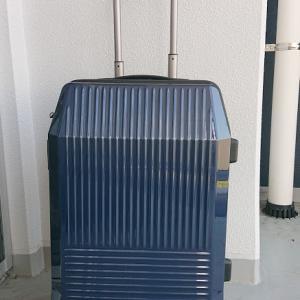 スーツケースの鍵はTSA        ACEのフリーウォーカー59リットルは便利です!