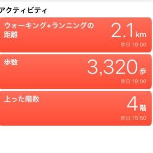 本日の1日1食トータル摂取カロリー729キロカロリー