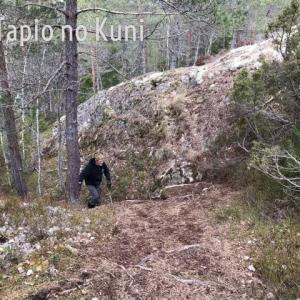小山へ散歩 そしてキノコを発見!