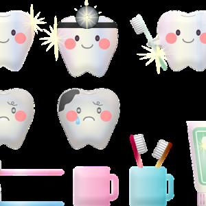 歯科衛生士さんにほめられた歯みがき|使っている4種の道具と2つ種の歯みがき剤