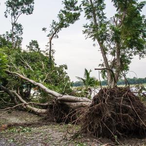 グアムの朝刊(2020.6.14):今シーズン2〜3の台風の可能性