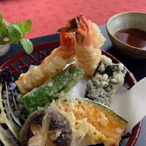 【日本食 YouTube】 動画🎥放映が東京マートでスタート!