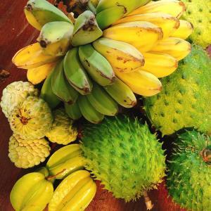 【南国フルーツ】種まで食べれる!?世界最大の果実「ジャックフルーツ」