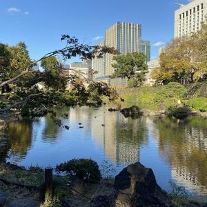 紅葉が綺麗な日比谷公園&思い出の松本楼での取材♪