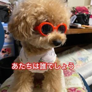 もうすぐ梅雨明け(^_-)-☆